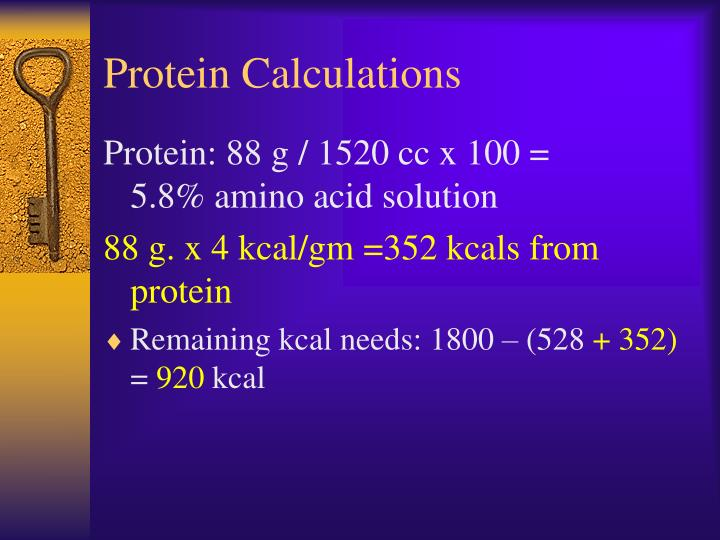 Protein Calculations
