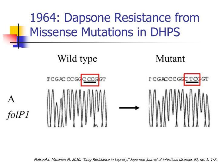 1964: Dapsone Resistance from Missense Mutations in DHPS