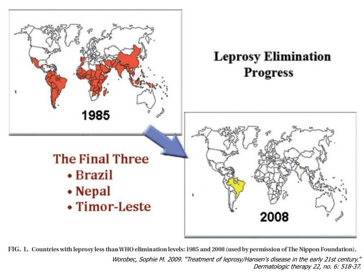 """Worobec, Sophie M. 2009. """"Treatment of leprosy/Hansen's disease in the early 21st century."""""""
