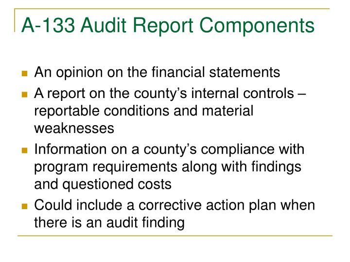 A-133 Audit Report Components