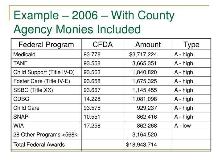 Example – 2006 – With County Agency Monies Included