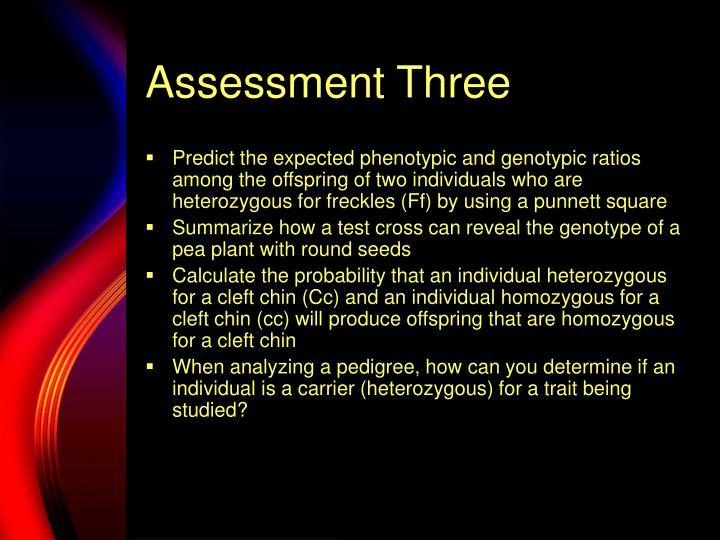Assessment Three