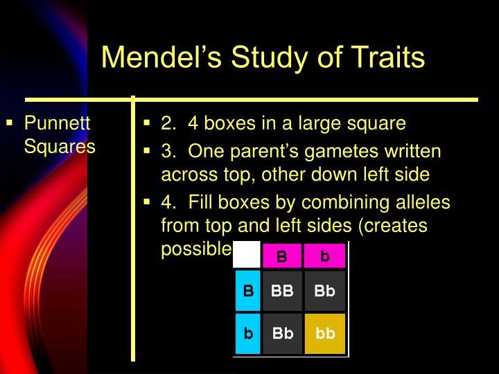 Mendel s study of traits1