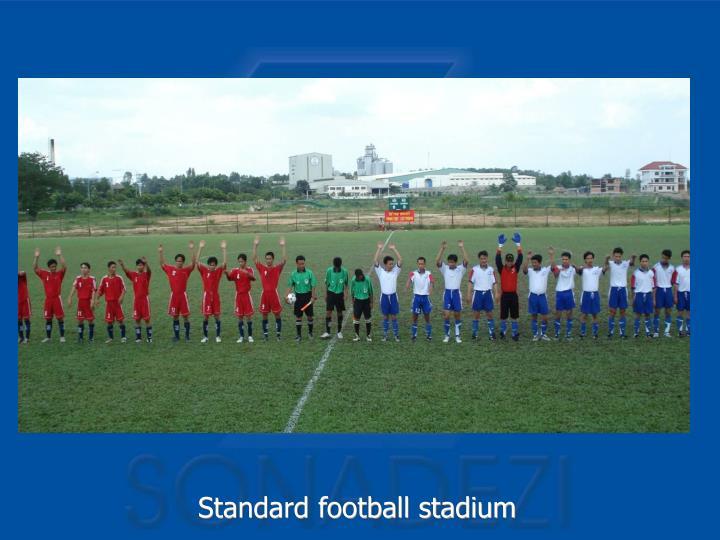 Standard football stadium