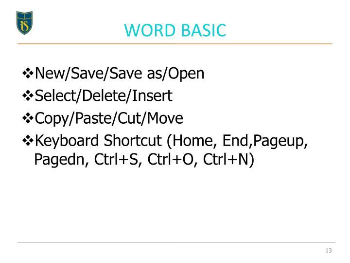 WORD BASIC
