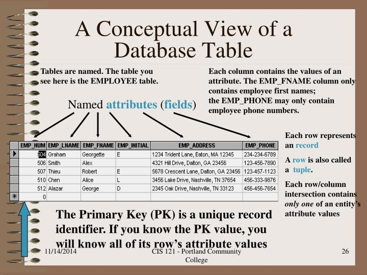 A Conceptual View of a Database Table