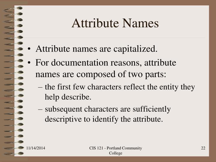 Attribute Names
