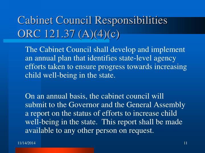 Cabinet Council Responsibilities