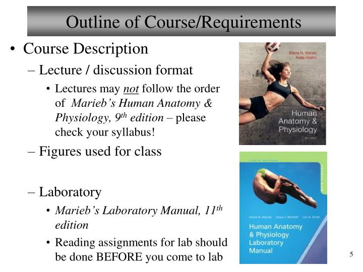PPT - Welcome to Anatomy & Physiology II PowerPoint Presentation ...