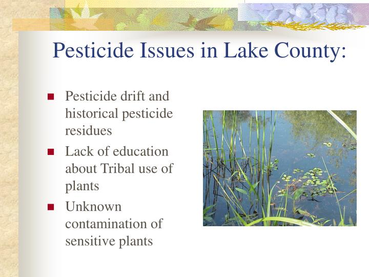 Pesticide issues in lake county