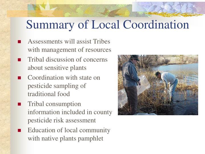 Summary of Local Coordination