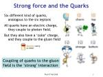 strong force and the quarks