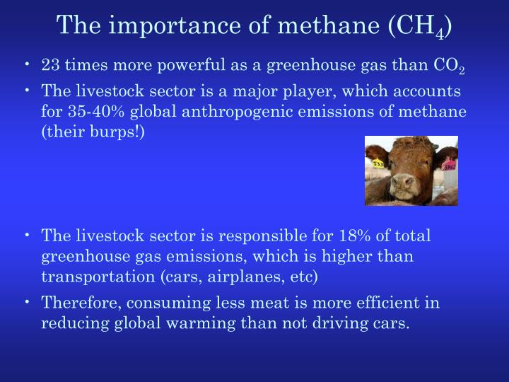 The importance of methane (CH