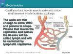 metarterioles