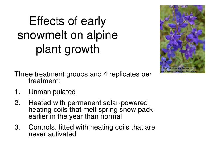 Effects of early snowmelt on alpine plant growth