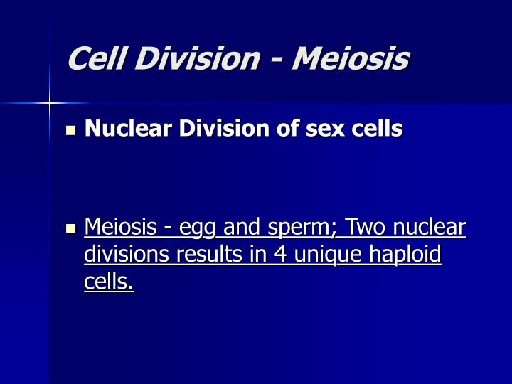 Cell Division - Meiosis