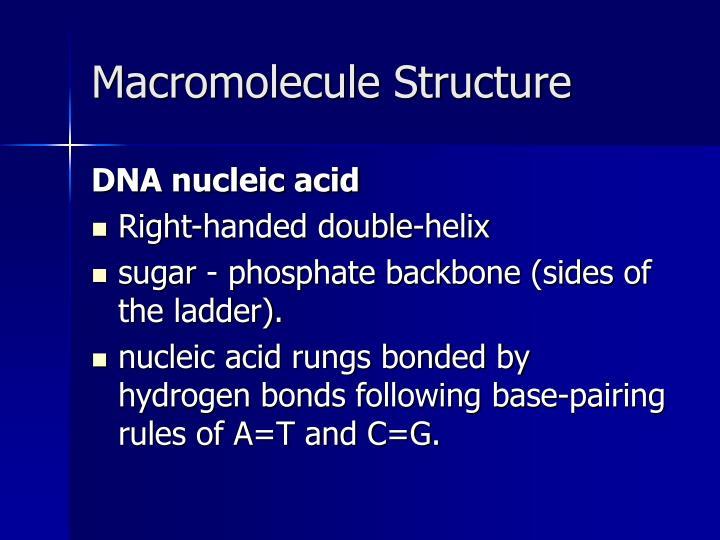 Macromolecule structure