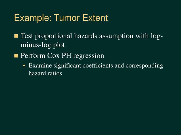 Example: Tumor Extent