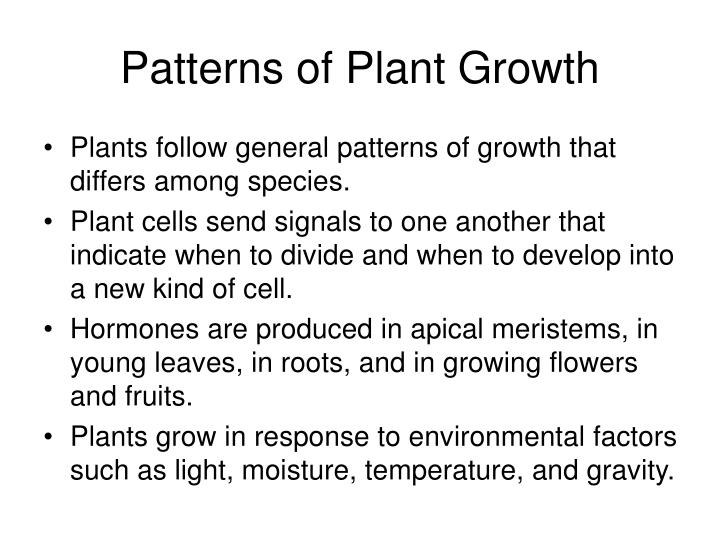 Patterns of plant growth