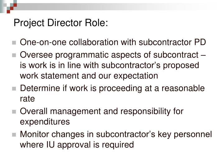 Project Director Role: