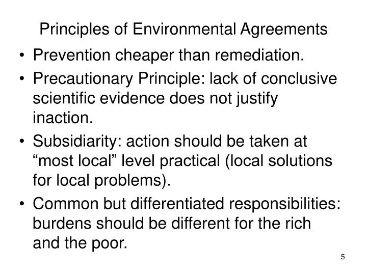 Principles of Environmental Agreements