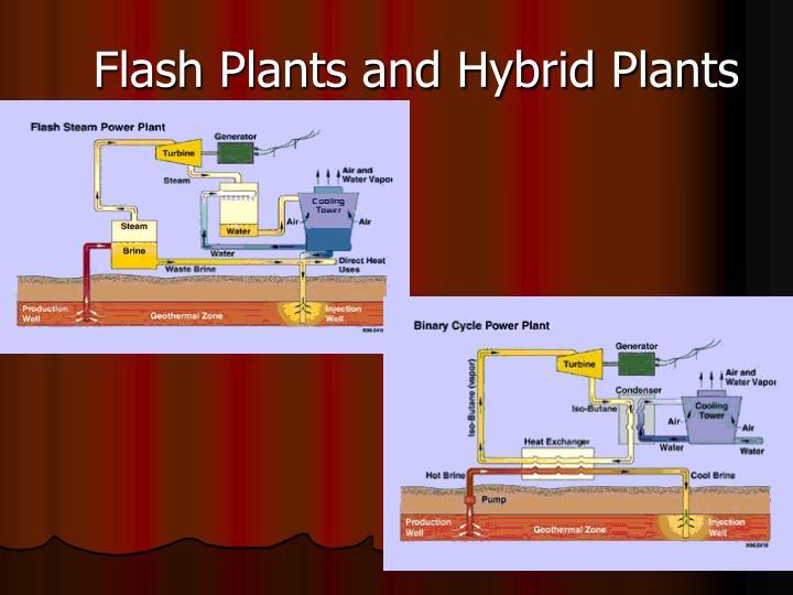 Flash Plants and Hybrid Plants