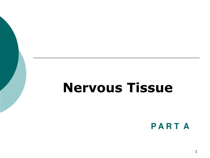 fundamentals of the nervous system and nervous tissue n.