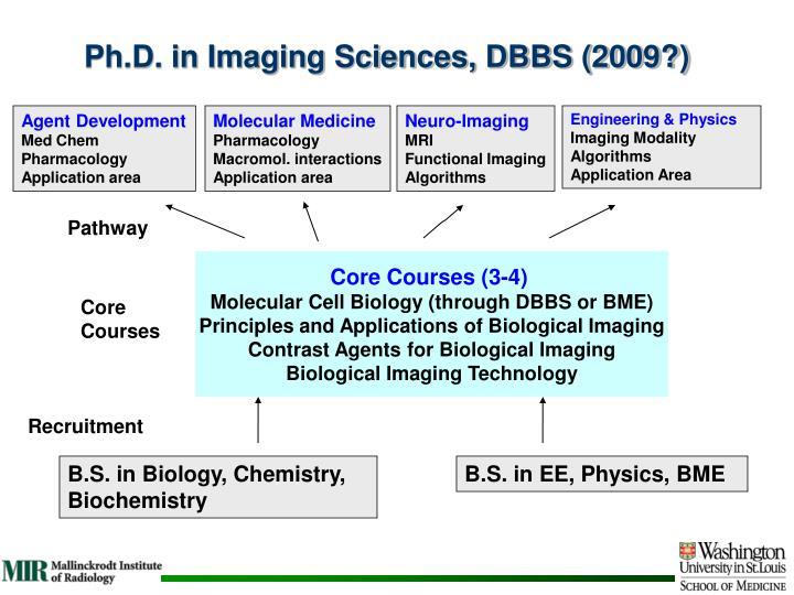 Ph.D. in Imaging Sciences, DBBS (