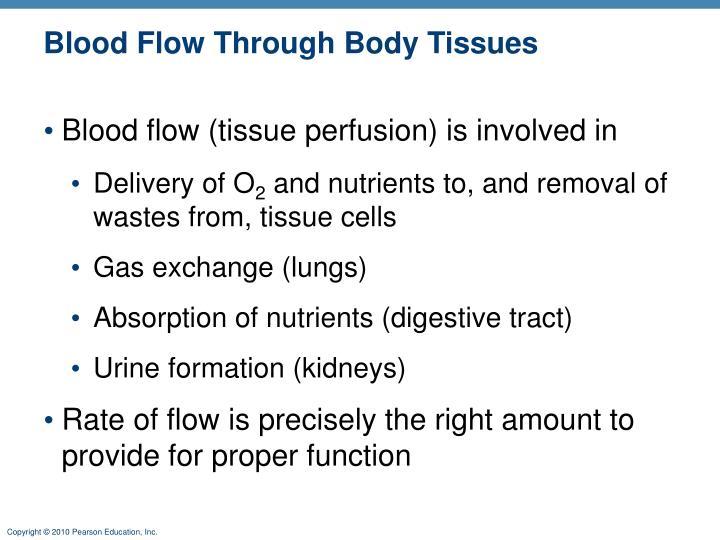 Blood Flow Through Body Tissues