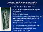 detrital sedimentary rocks1
