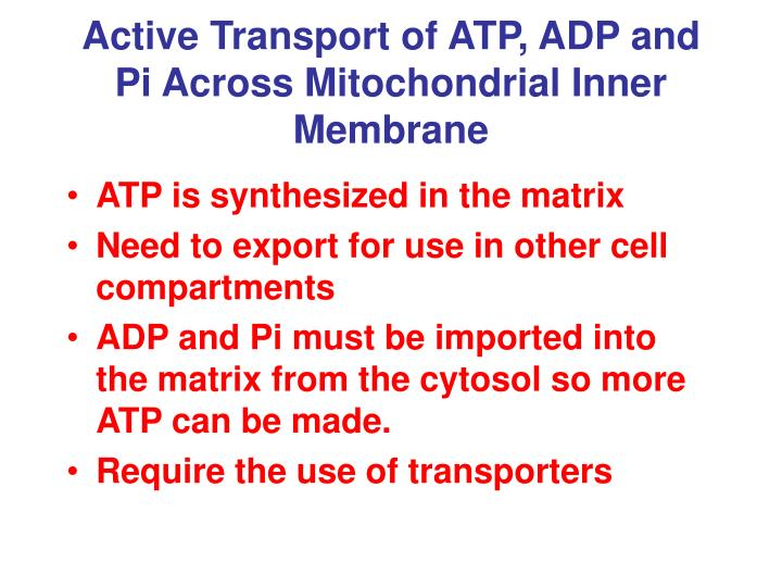 Active Transport of ATP, ADP and Pi Across Mitochondrial Inner Membrane