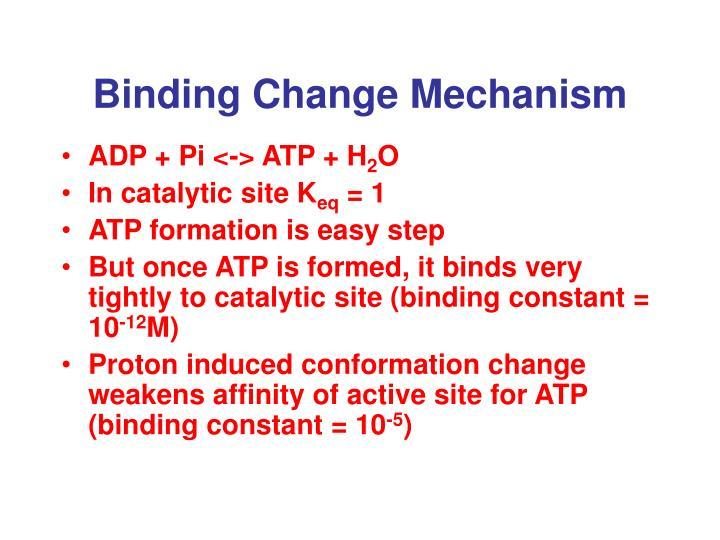 Binding Change Mechanism