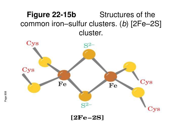 Figure 22-15b