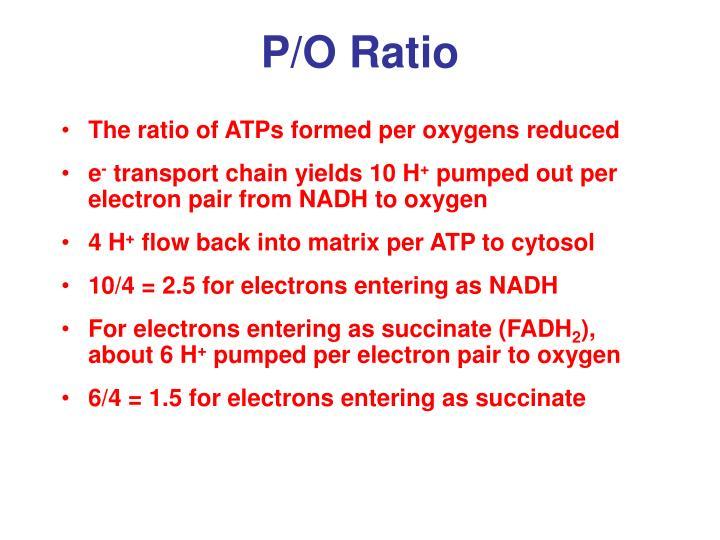 P/O Ratio