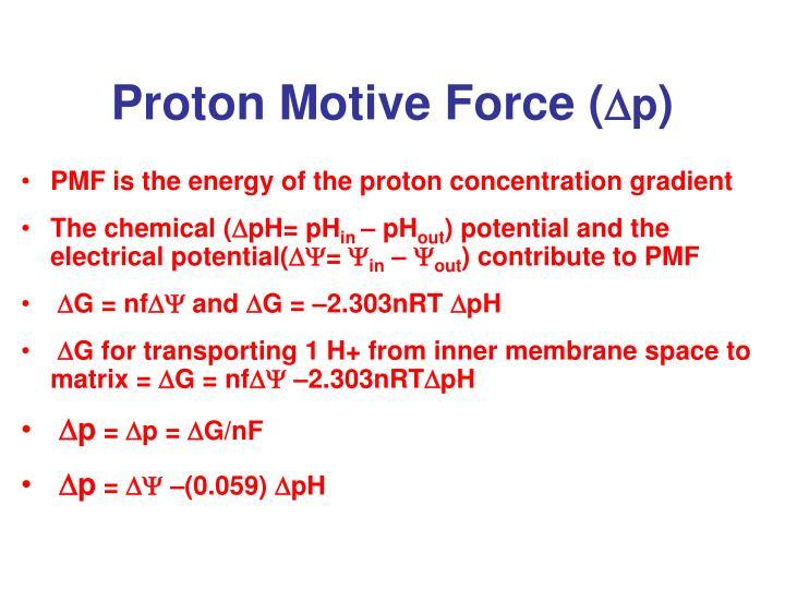 Proton Motive Force (