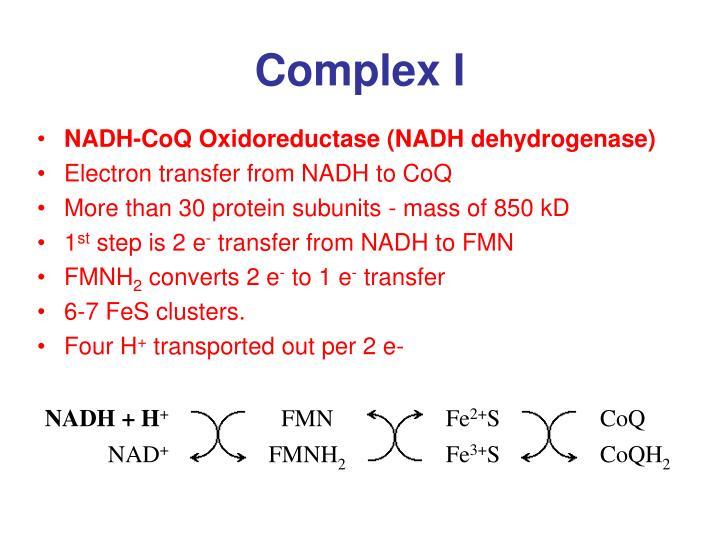 NADH + H
