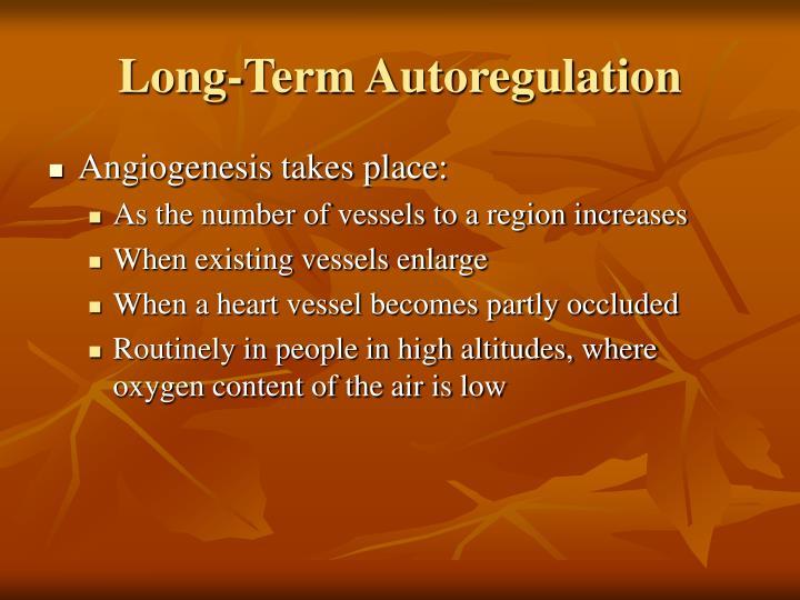 Long term autoregulation1