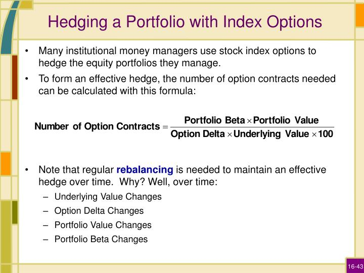 Hedging a Portfolio with Index Options