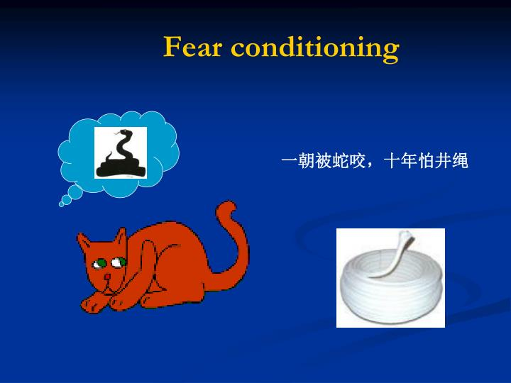 Fear conditioning