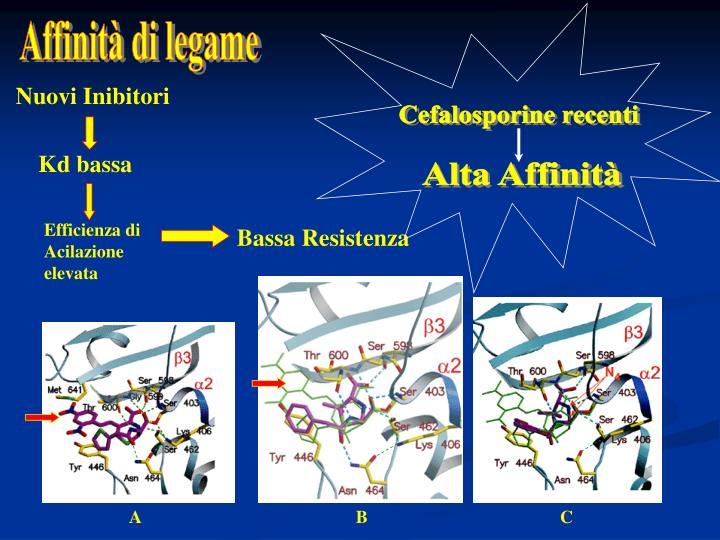 Cefalosporine recenti