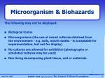 microorganism biohazards