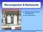 microorganism biohazards3