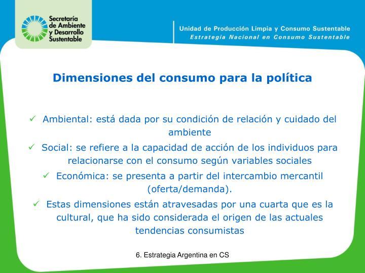 Dimensiones del consumo para la política