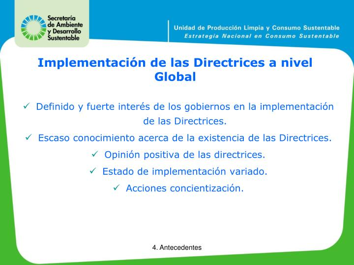 Implementación de las Directrices a nivel Global