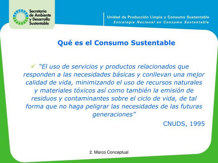 Qué es el Consumo Sustentable