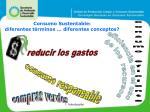consumo sustentable diferentes t rminos diferentes conceptos