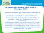 tercera reuni n de expertos de gobierno nicaragua 200 5