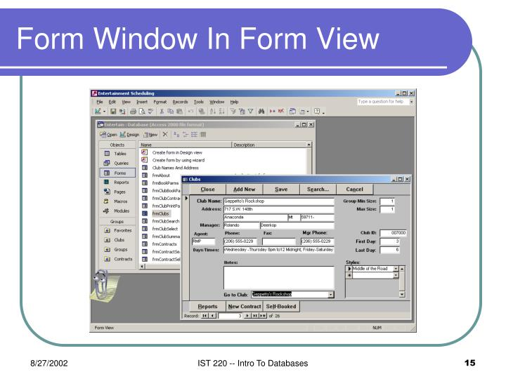 Form Window In Form View