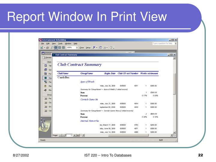 Report Window In Print View