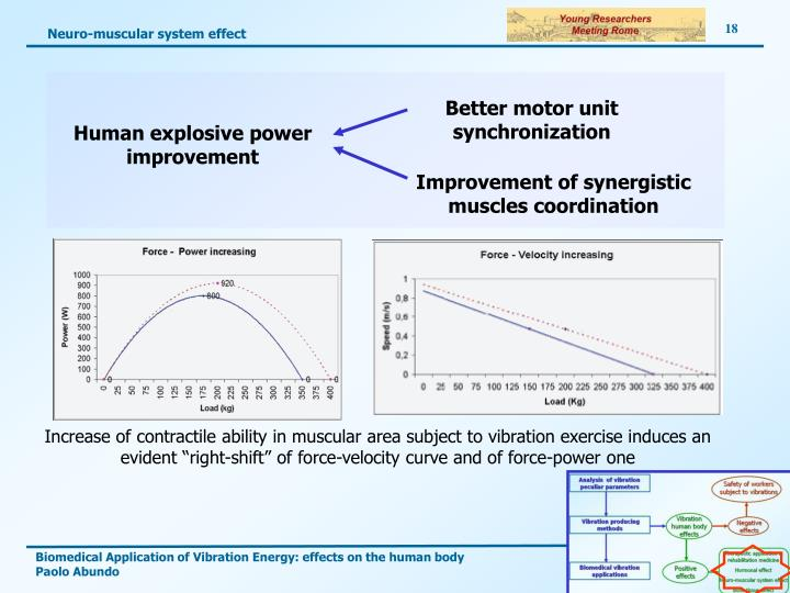 Neuro-muscular system effect